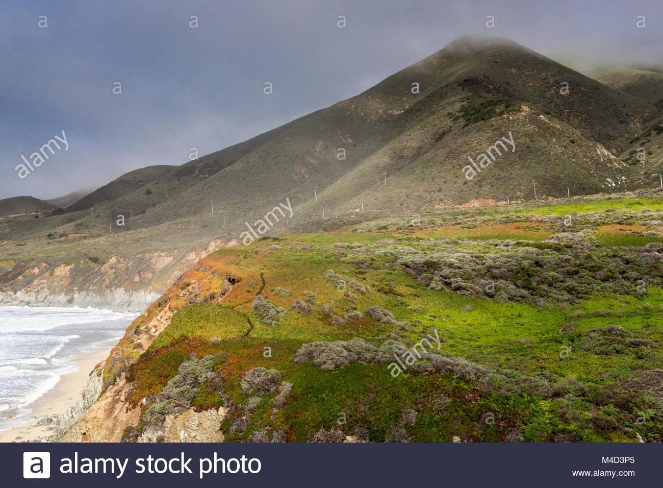 Foggy costa dell'Oceano Pacifico al punto Soberanes. Immagini Stock
