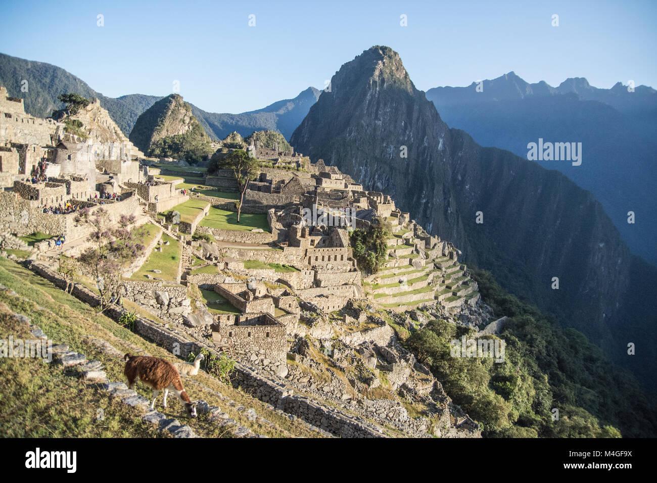 Rovine di Machu Picchu Città al mattino, Perù Immagini Stock