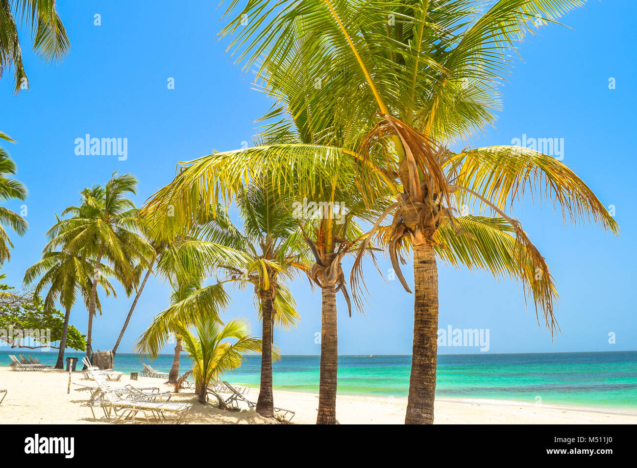 Bellissima spiaggia con palme, lettini, cielo blu e acque turchesi, Repubblica Dominicana, Samana, piccola isola Immagini Stock