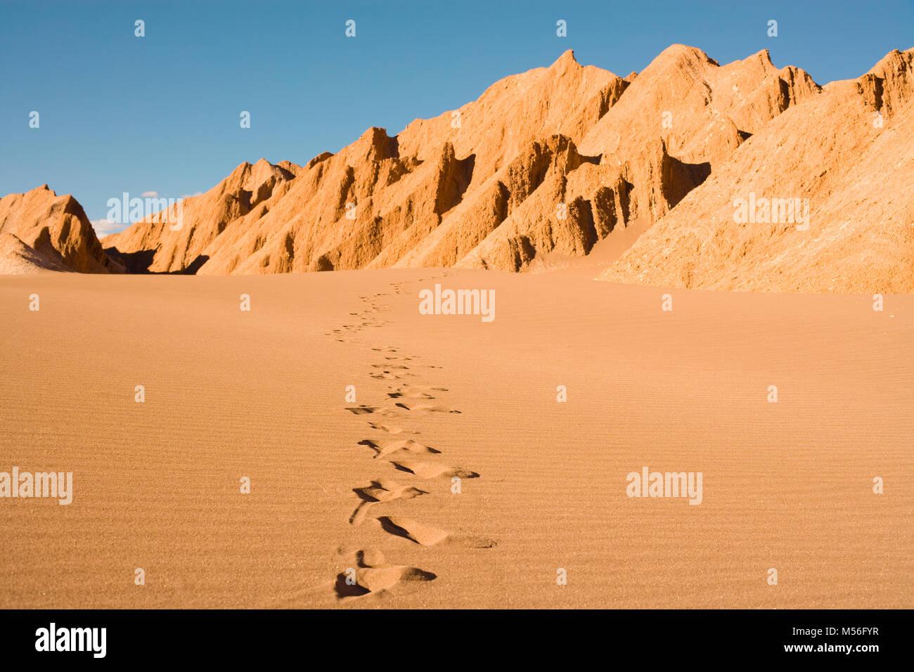 Impronte in Valle de la Muerte (spagnolo per la Valle della Morte) noto anche come la Cordillera de la Sal (spagnolo Immagini Stock