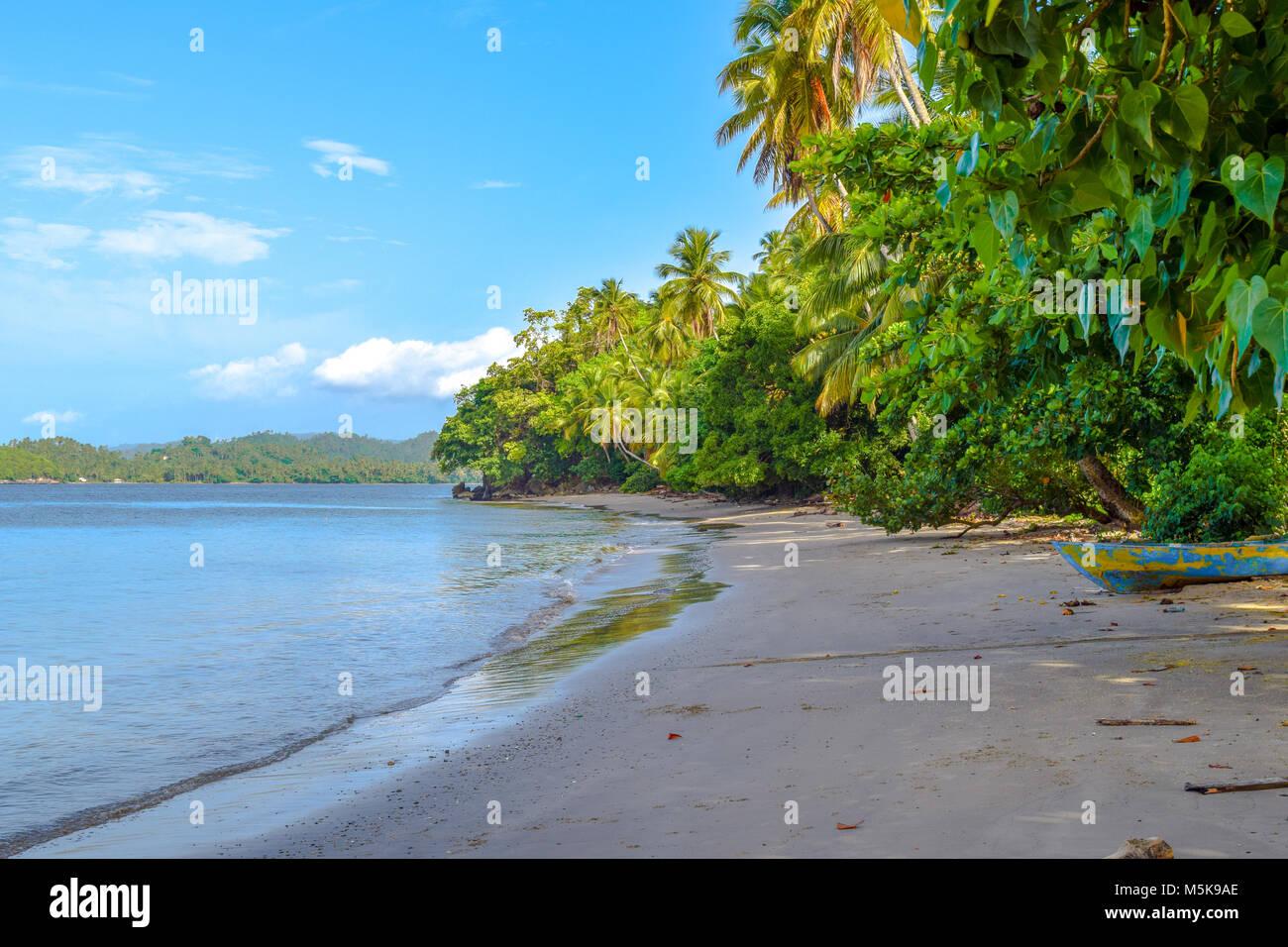 Palme e una vecchia imbarcazione, spiaggia sabbiosa, Repubblica Dominicana, mar dei Caraibi Immagini Stock