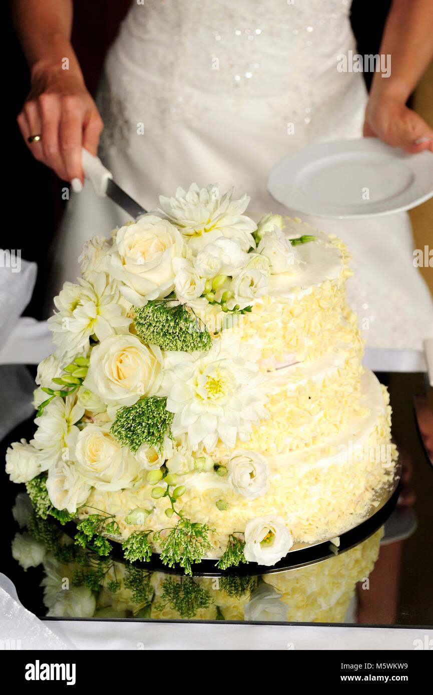 Sposa e Torta cerimonia, taglio, evento, Wedding, abbigliamento,partito, uomo, donna, giovane, relazione, torta Immagini Stock