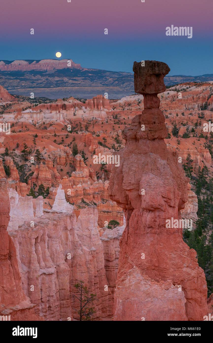 Ore del sorgere, Thors martello, Parco Nazionale di Bryce Canyon, Utah Immagini Stock