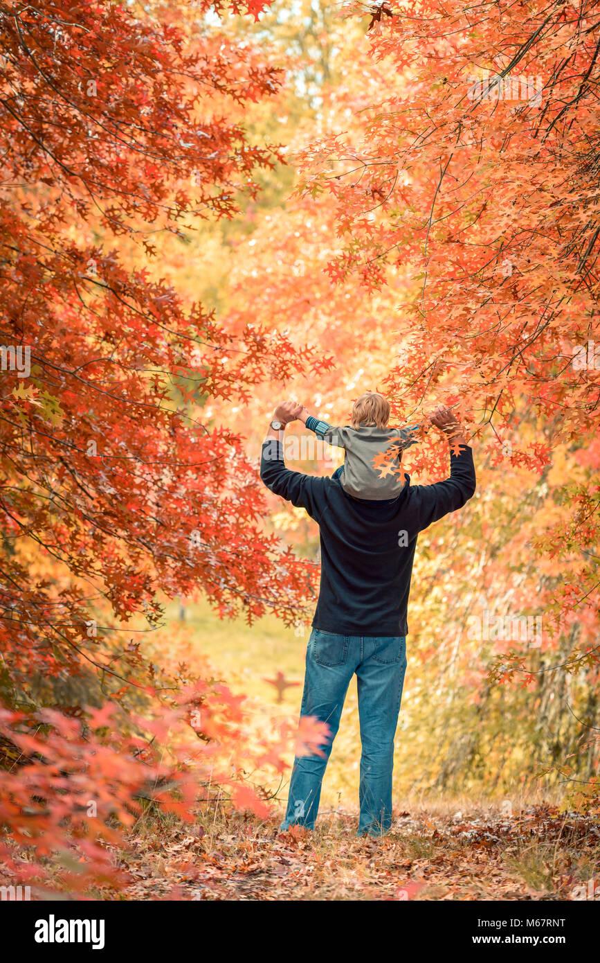 Padre dando figlio piggyback ride in autunno park Immagini Stock