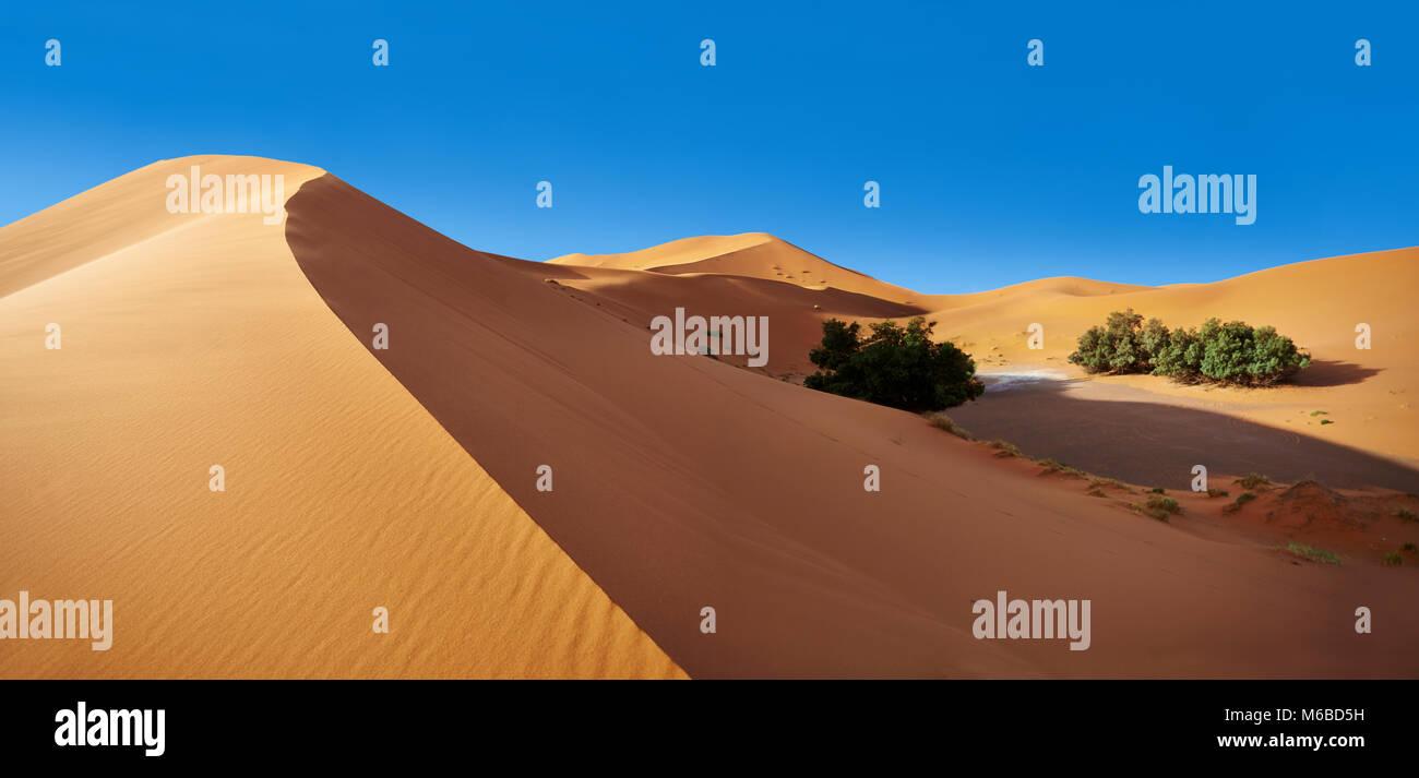 Sahara dune di sabbia di Erg Chebbi Marocco Foto Stock