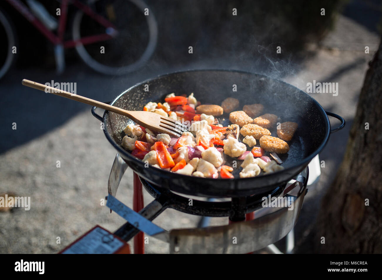 Il cibo in un recipiente per la cottura all'aperto. Immagini Stock