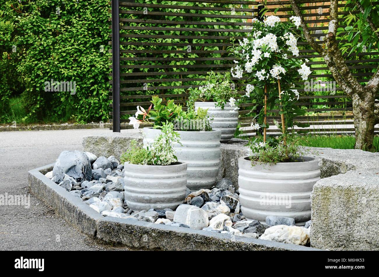 Il giardino di pietra la disposizione a ingresso di casa con verde