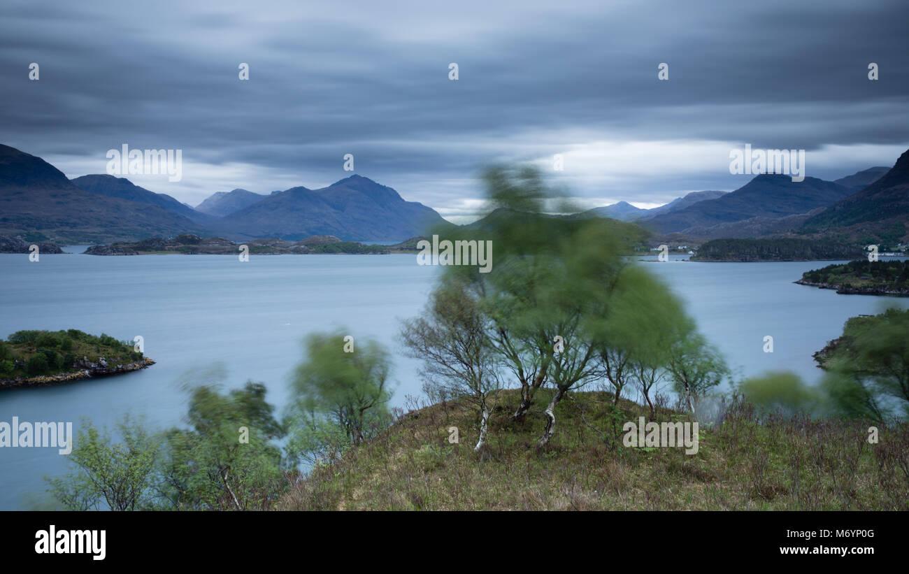 Un albero nel vento sopra Loch Shieldaig con i monti Torridon oltre, Wester Ross, Scotland, Regno Unito Immagini Stock