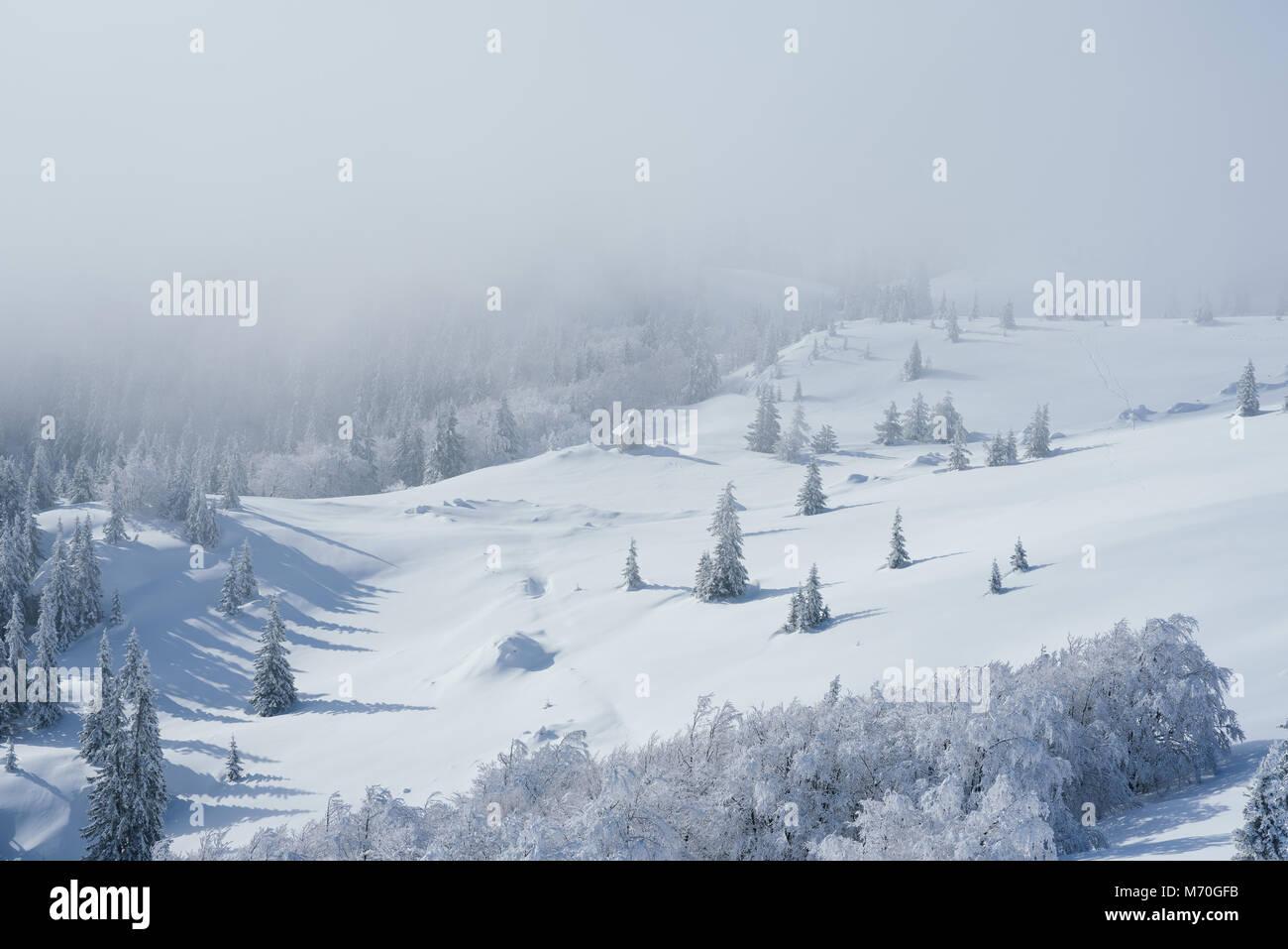 Ambiente invernale in montagna Immagini Stock