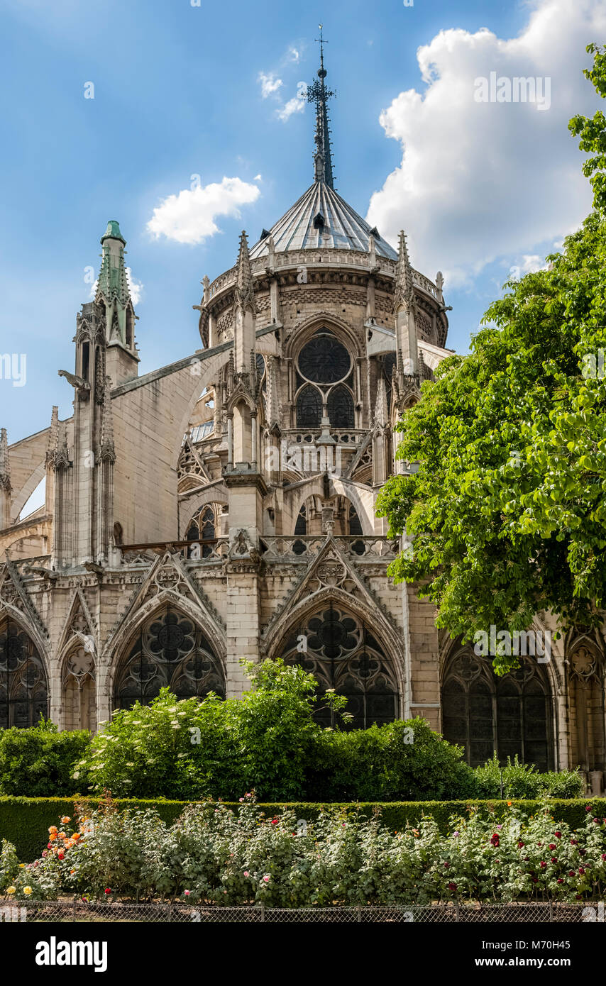 Parigi, Francia: La Cattedrale di Notre Dame a l'Ile de la Cite visto da Jean XXIII Giardino Immagini Stock