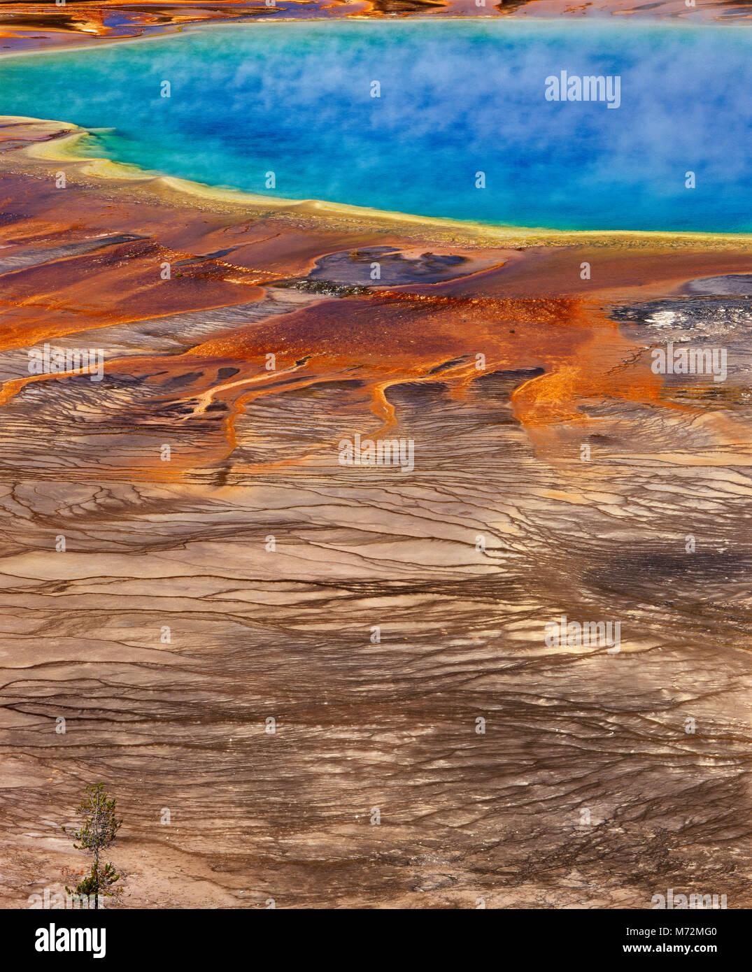 Grand Prismatic Spring, Midway Geyser Basin, il Parco Nazionale di Yellowstone, Wyoming Immagini Stock