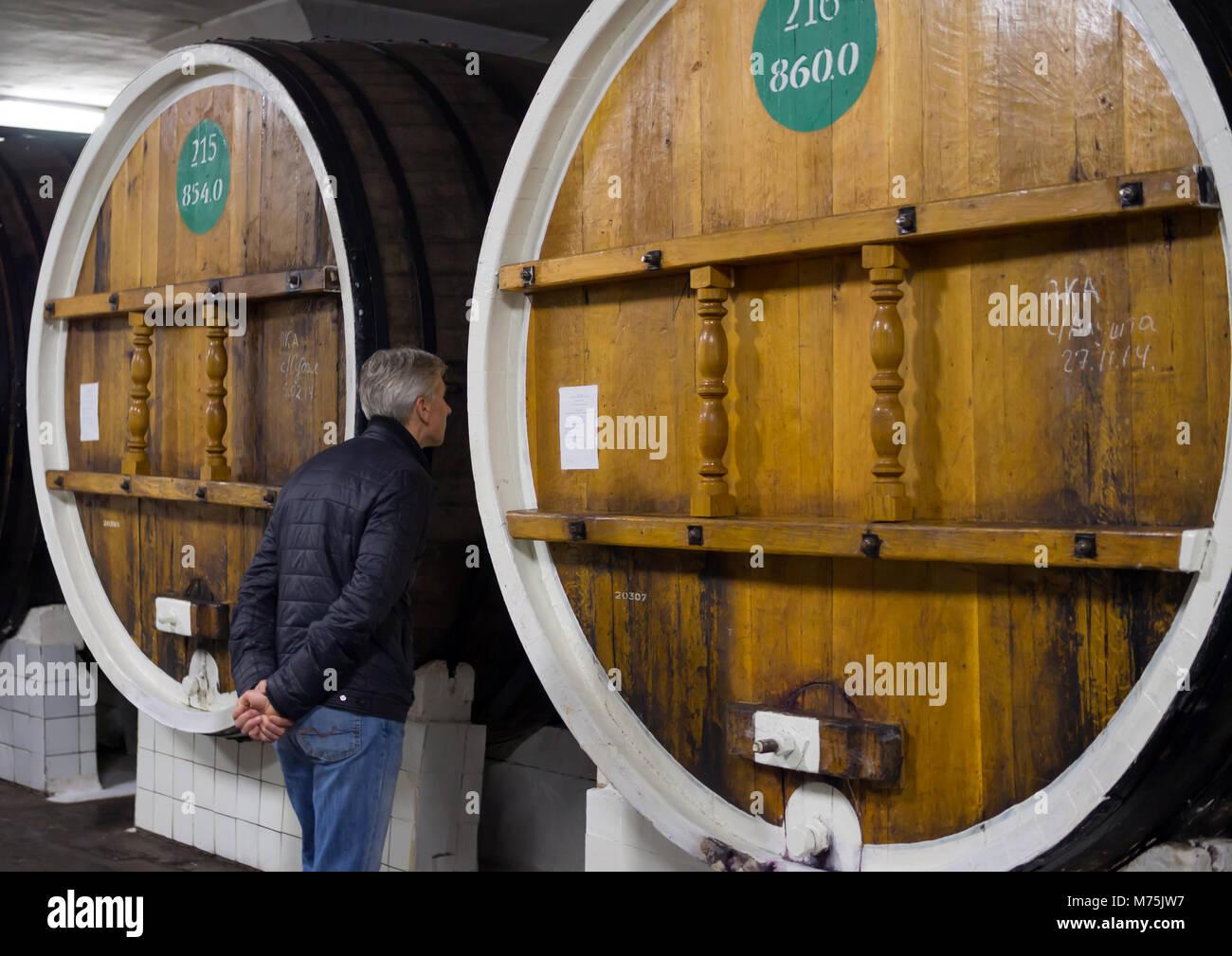 Massandra, Russia - 09 Novembre 2015: sta un uomo in botti da vino nel negozio la velocità di otturazione e Immagini Stock
