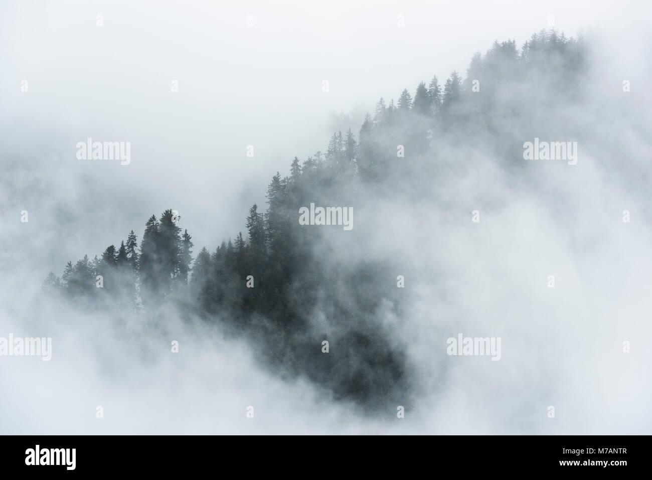Misty umore nelle alpi dolomitiche con teleobiettivo, Italia Immagini Stock