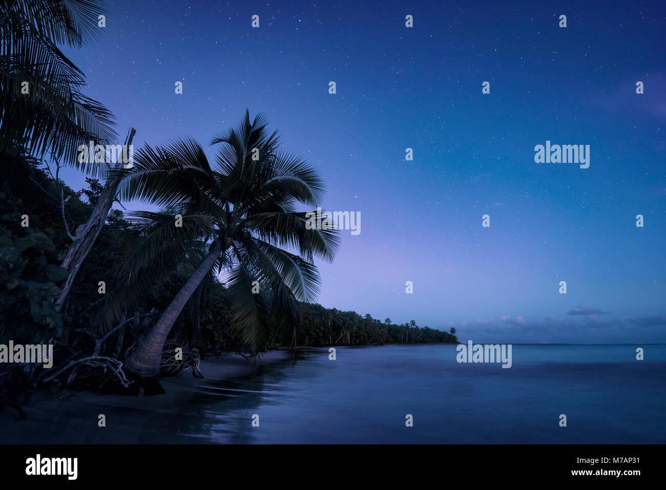 Caraibi notte con stelle all'alba, sogno sulla spiaggia di Puerto Rico Immagini Stock