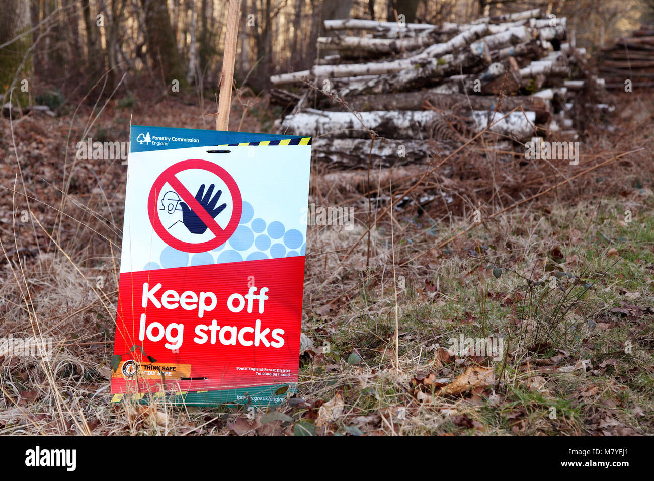 Segno di avvertimento del pericolo di grandi pile di log e il log di pile. Tenere lontane le pile di registro! Immagini Stock
