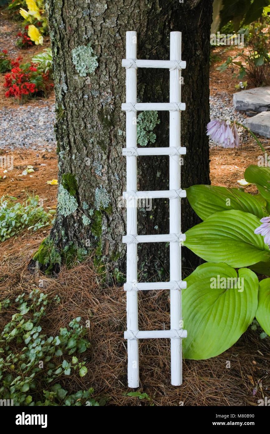 Scala Di Legno Decorativa bianca decorativa scala in legno contro un grande pinus