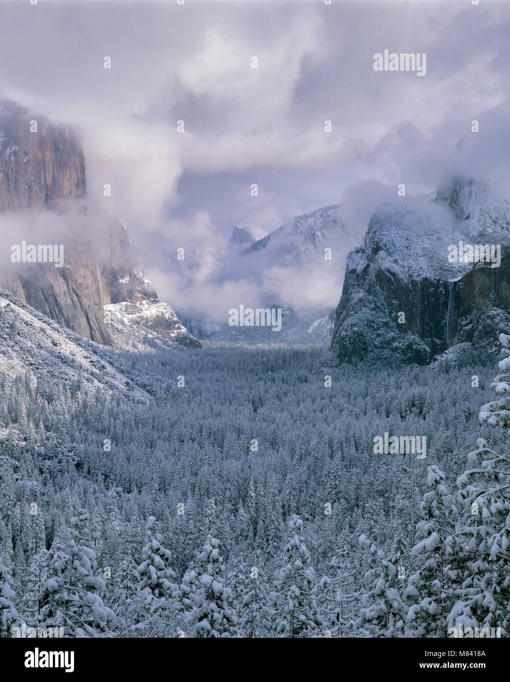 Cancellazione di tempesta, Yosemite Valley, il Parco Nazionale Yosemite in California Immagini Stock