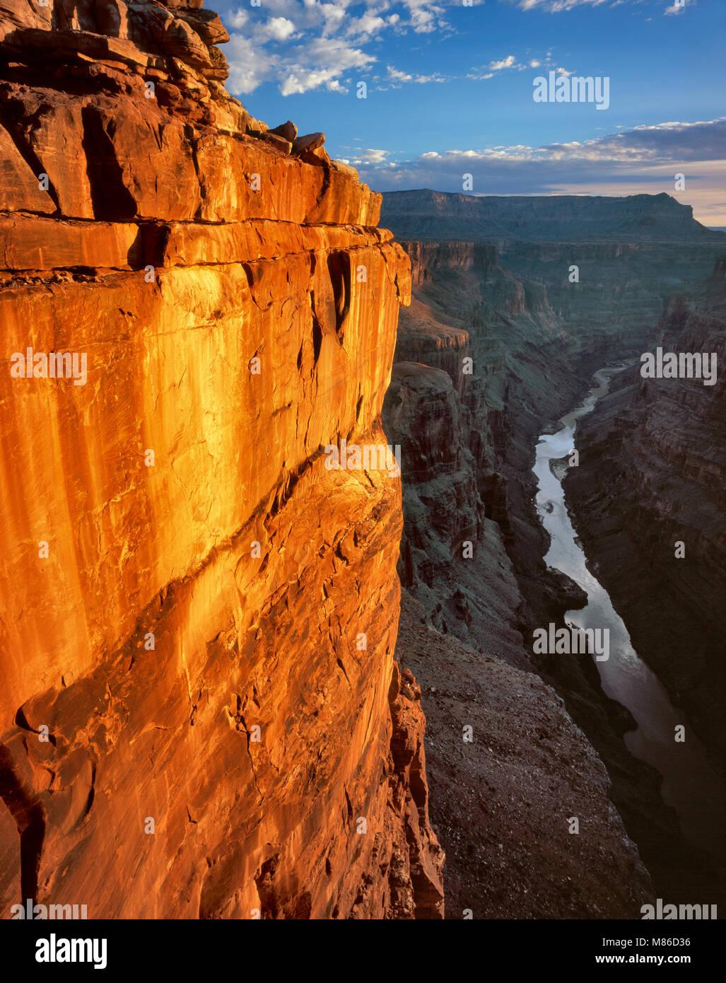 Toroweap si affacciano, il Fiume Colorado e il Grand Canyon National Park, Arizona Immagini Stock