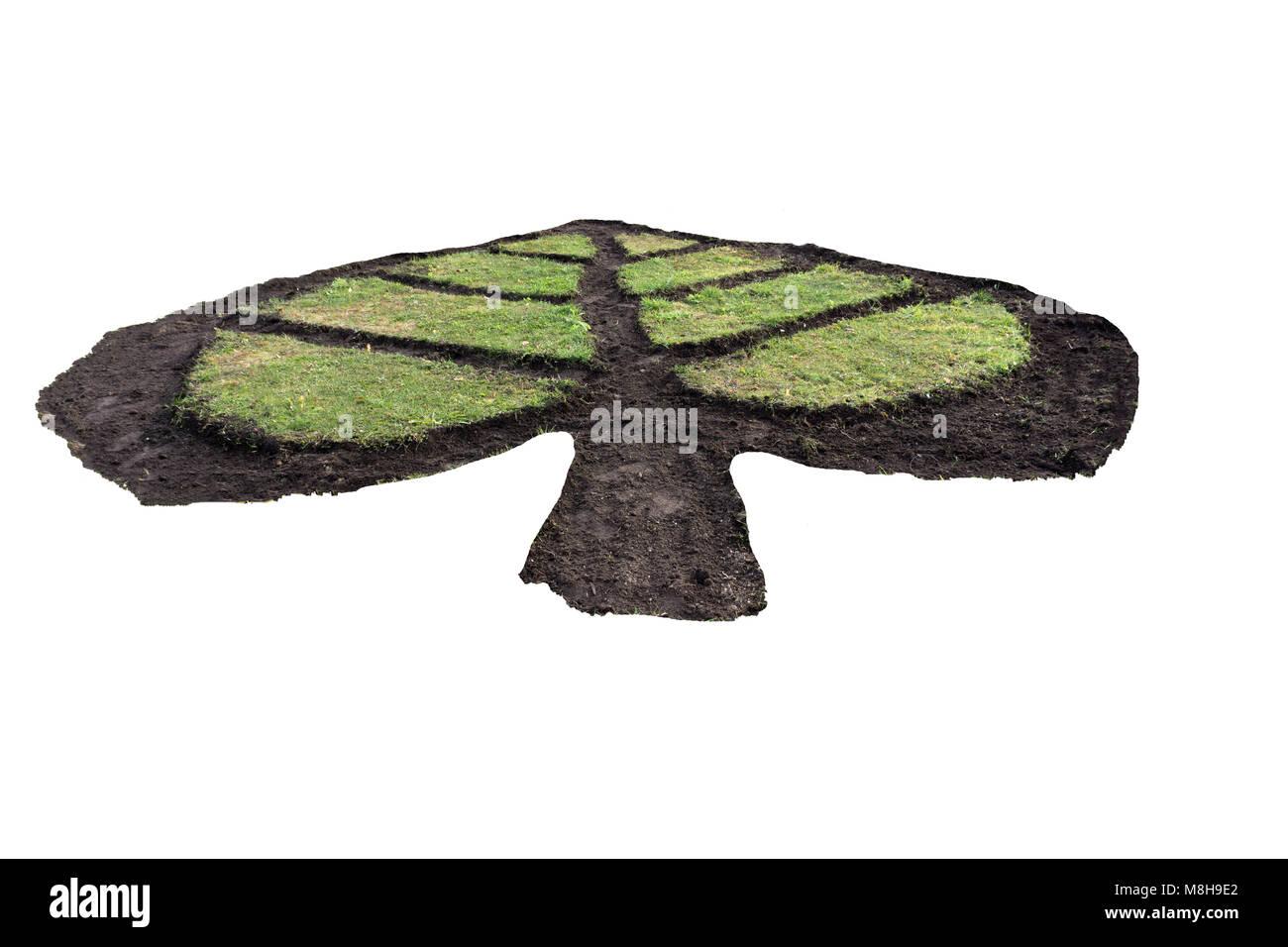 Crudo fresco di foglie di menta isolato ramoscello di spezie Immagini Stock