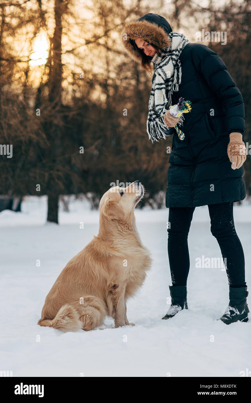 Immagine della femmina con il labrador in winter park per camminare Immagini Stock
