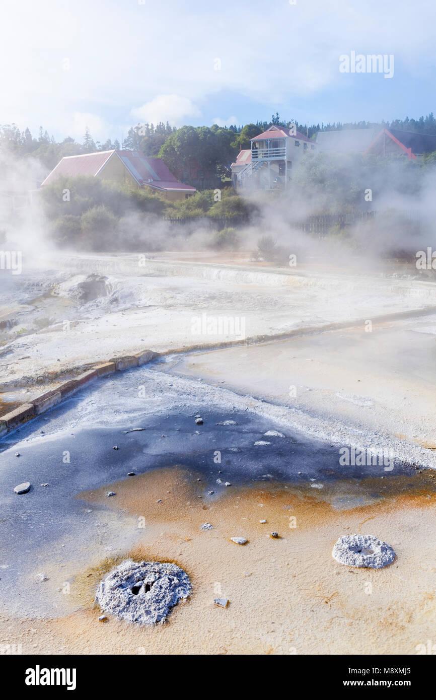 Nuova Zelanda Rotorua Nuova Zelanda whakarewarewa rotorua terrazze con deposito di minerali run off dal pool parekohuru Foto Stock