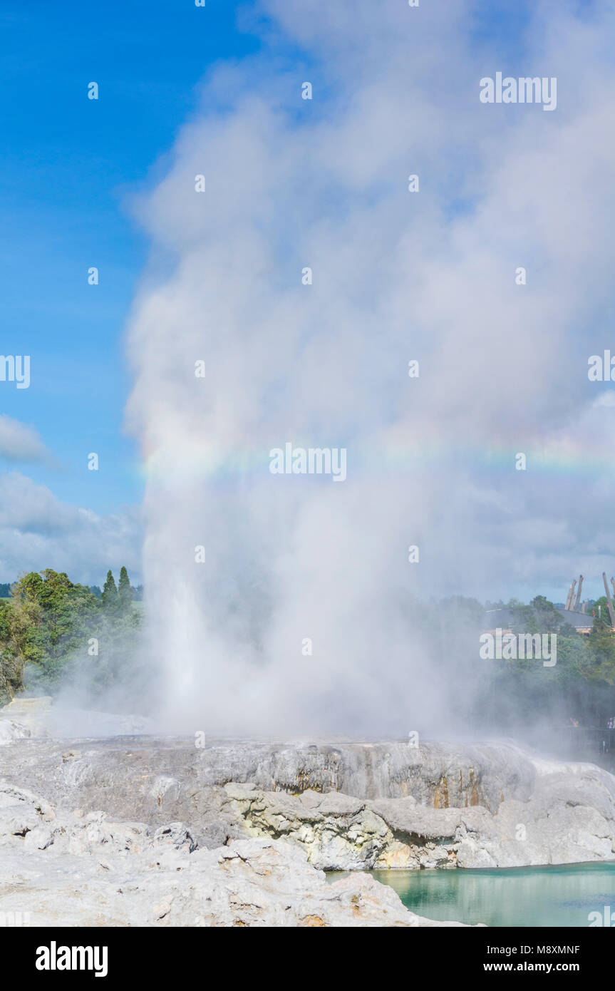 Nuova Zelanda Rotorua Nuova Zelanda whakarewarewa rotorua Pohutu geyser e il Principe di Galles geyser lago blu Immagini Stock