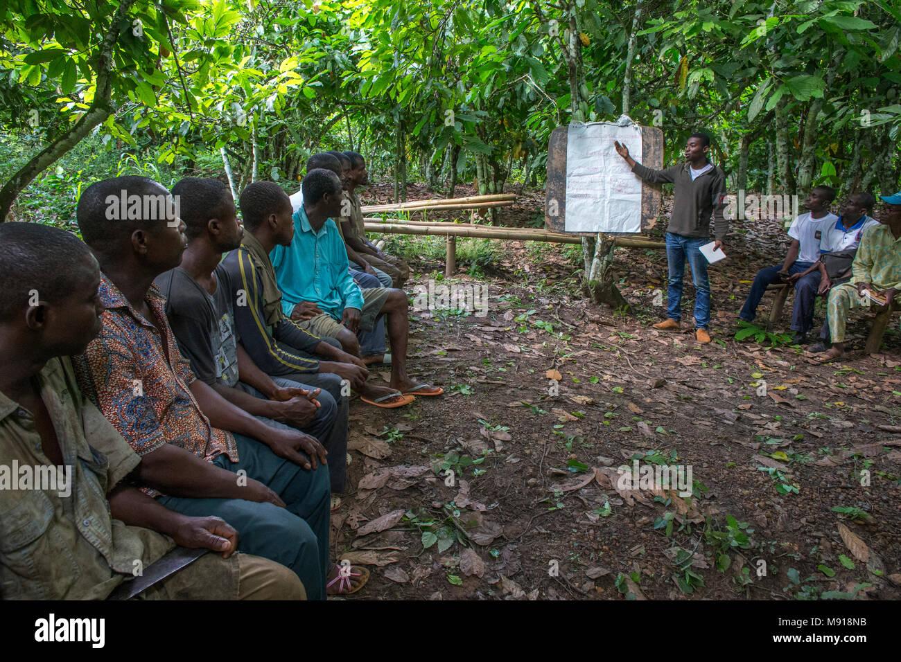 La Costa d Avorio. Produttori di cacao' instruction. Immagini Stock