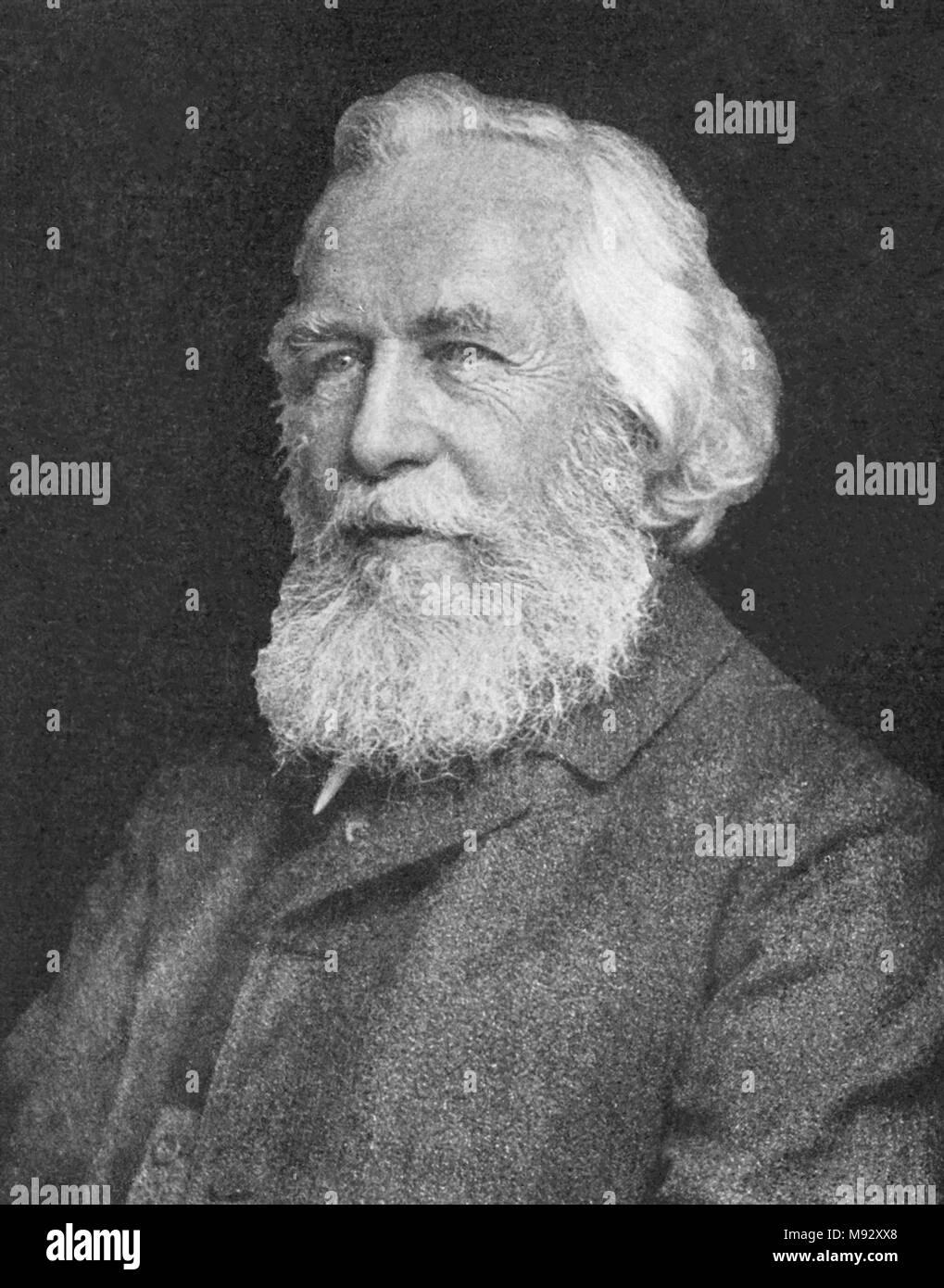 Ernst Heinrich Philipp August Haeckel (1834 - 1919) Tedesco biologo naturalista, filosofo, medico, professore, biologo marino Immagini Stock