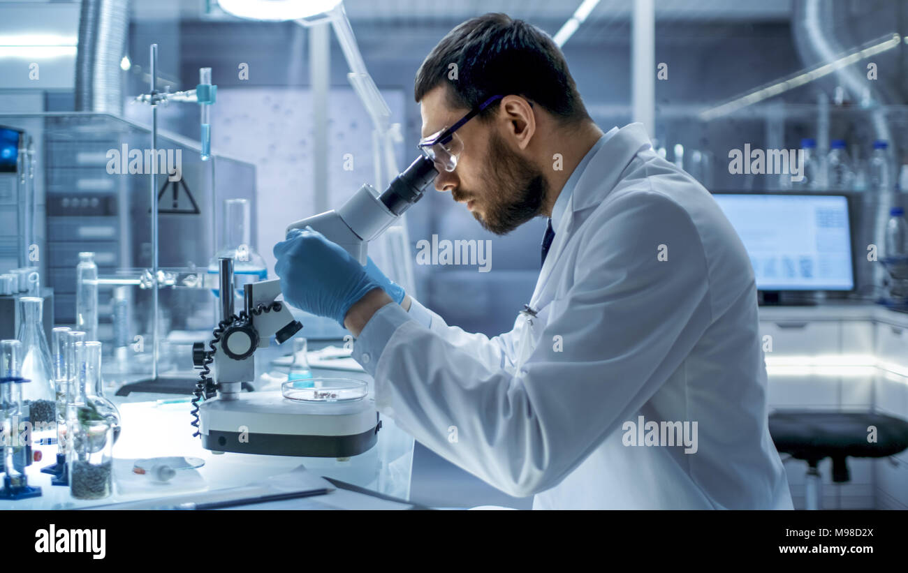In un moderno laboratorio Chief Research Scientist esaminando la sostanza in una capsula di Petri sotto microscopio. Immagini Stock