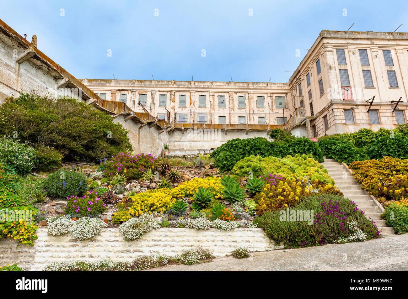 Giardini prigioniero sull isola di Alcatraz nella Baia di San Francisco, California, Stati Uniti d'America. Isola di Alcatraz ospita un carcere abbandonato ed è ora un museo. Immagini Stock