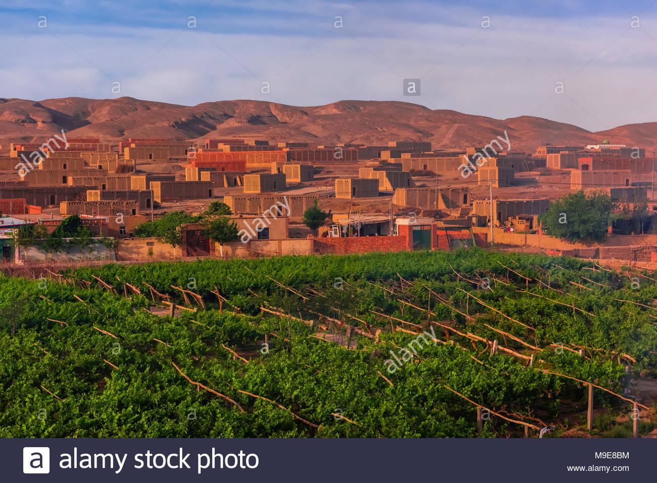 Uva case di essiccazione nella valle Yarnaz, Turpan, provincia dello Xinjiang. Turpan è un oasi nel deserto. Acqua per l'agricoltura proviene da un impressionante anci Immagini Stock