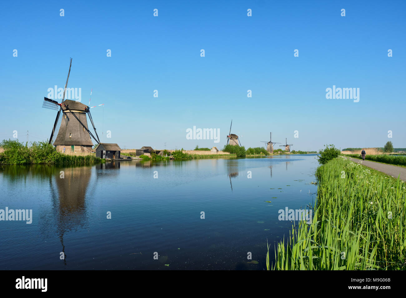 Mulini a vento a Kinderdijk in Olanda. Paesi Bassi Foto Stock