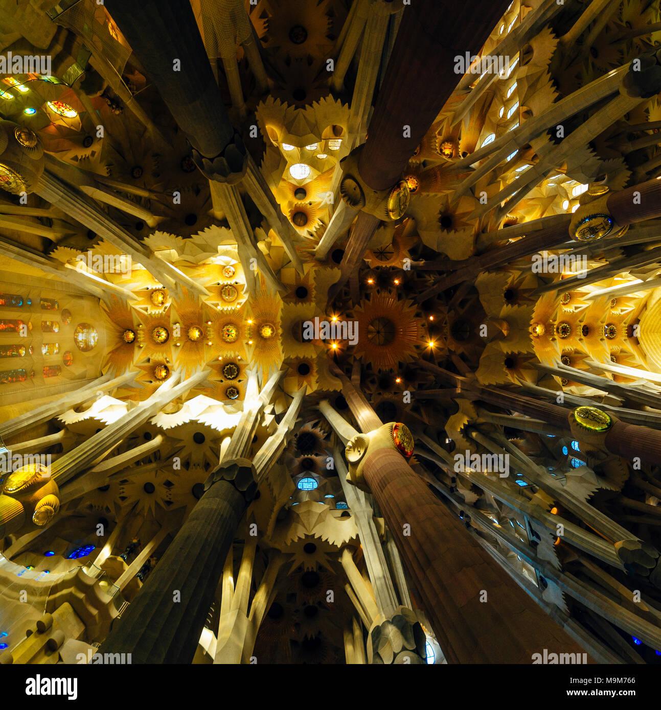 Ampio angolo di vista fino all'interno de la Sagrada Familia di Barcellona Immagini Stock