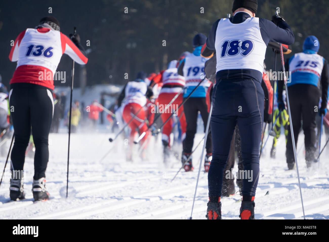 Competizioni in gare di sci disciplina, chiamato il numero di persone che iniziano nello stesso momento Immagini Stock