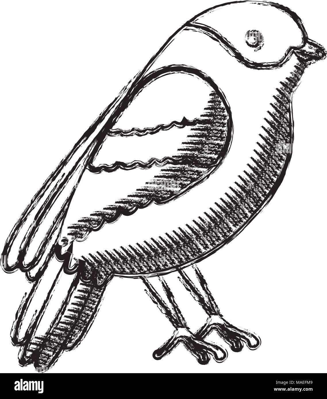 nero uccello scena di sesso