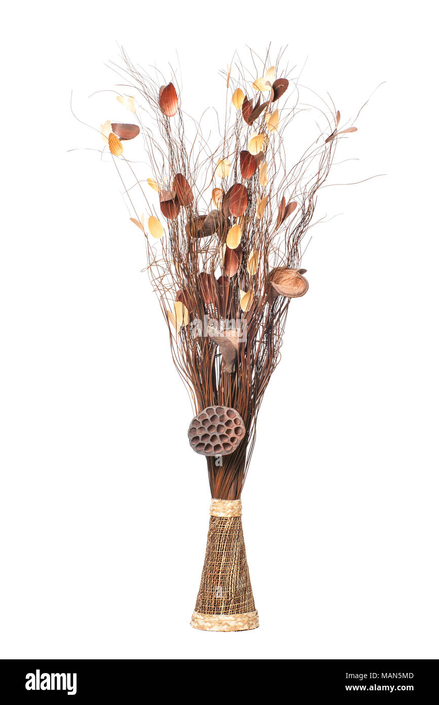 Rami secchi la nostra siepe di rami secchi nel tempo potr crescere in lunghezza e altezza - Rami secchi decorativi ...