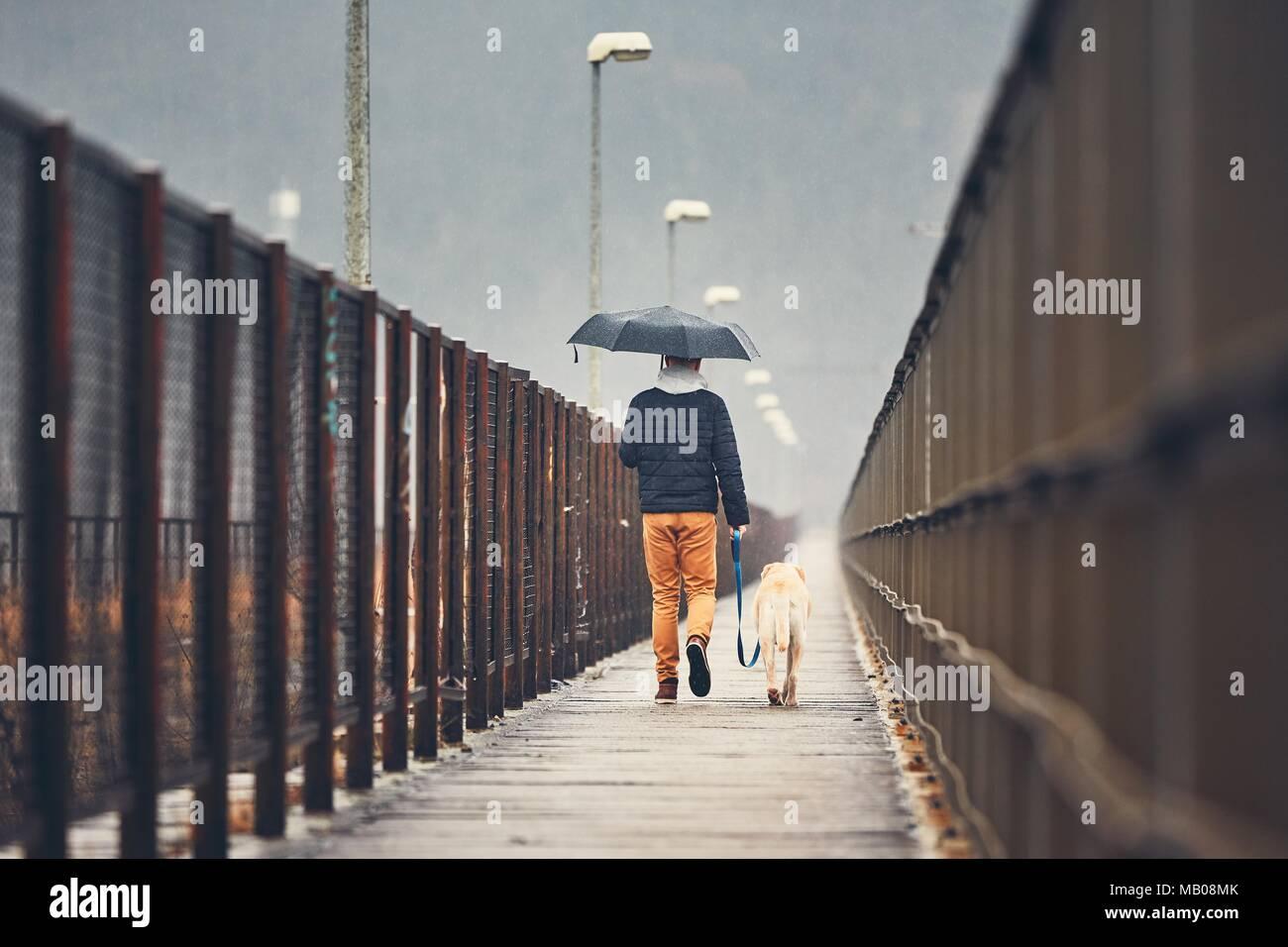 Fosche previsioni in città. L'uomo con il suo cane (labrador retriever) camminando sotto la pioggia sul ponte. Praga, Repubblica Ceca Immagini Stock
