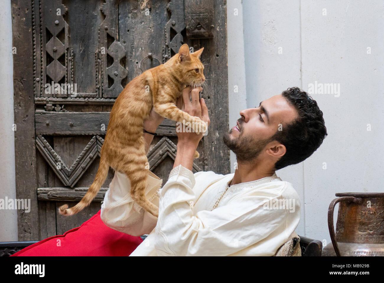 Giovani Musulmani uomo tenendo un gatto giallo di fronte ad una parete decorata Immagini Stock