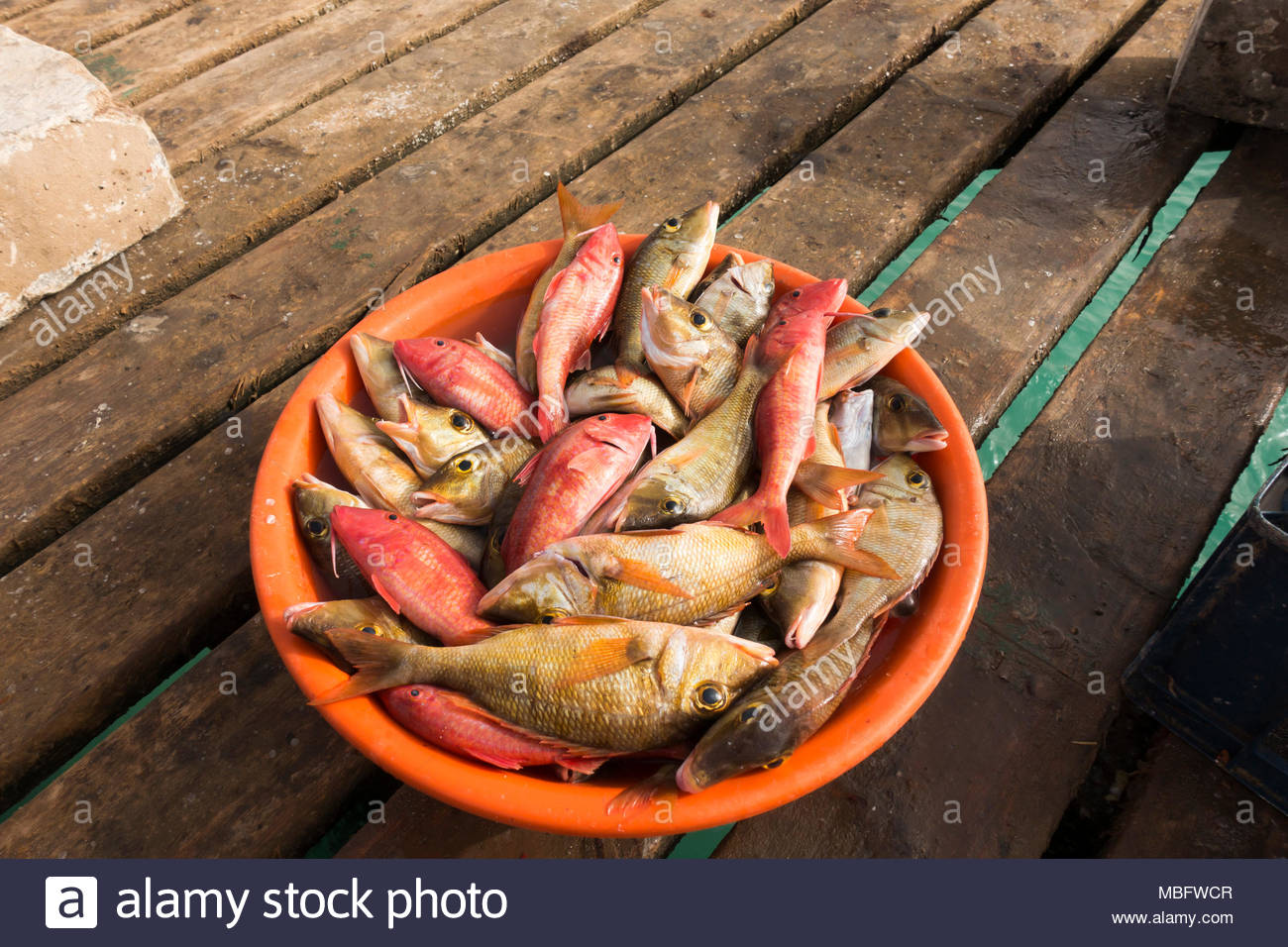 un sacco di pesce hook updati di contatto di incontri uniformi