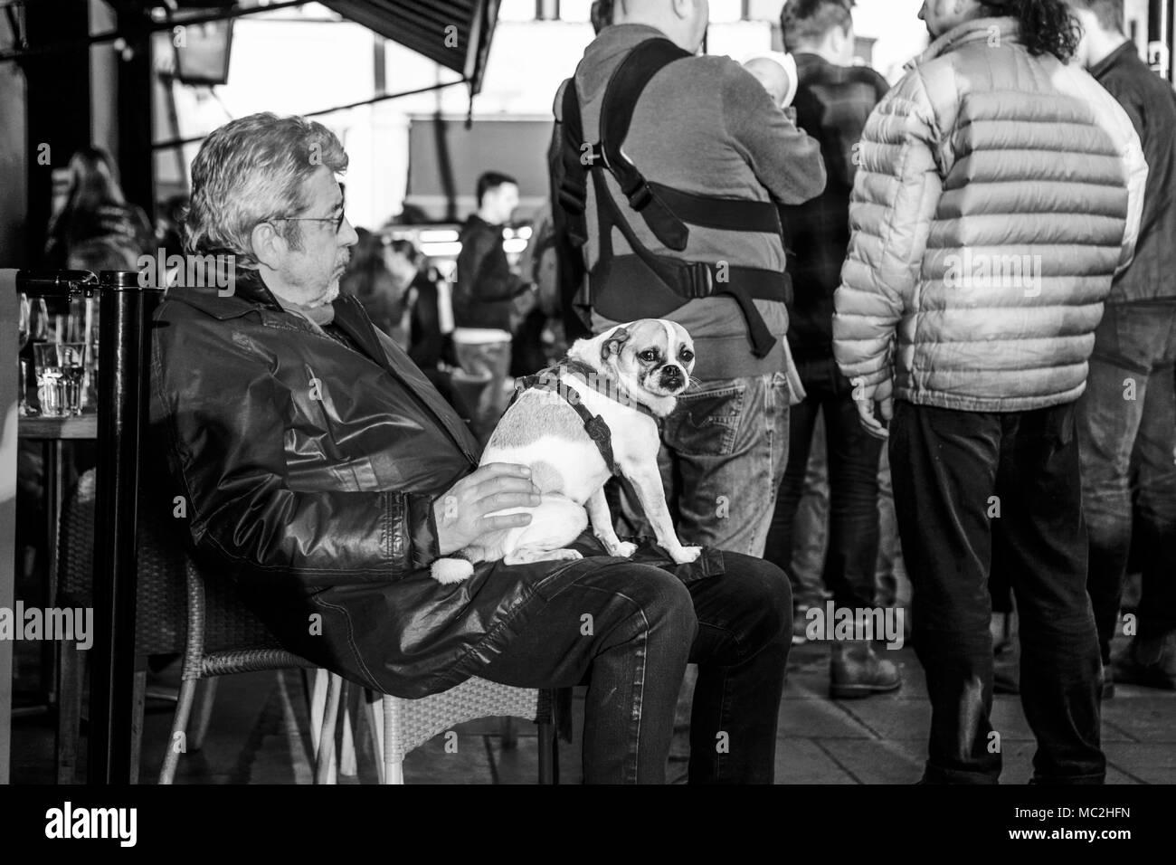 Compagnia - La vecchiaia pensionato oap, proprietario del cane, con un piccolo cane da compagnia. Foto Stock