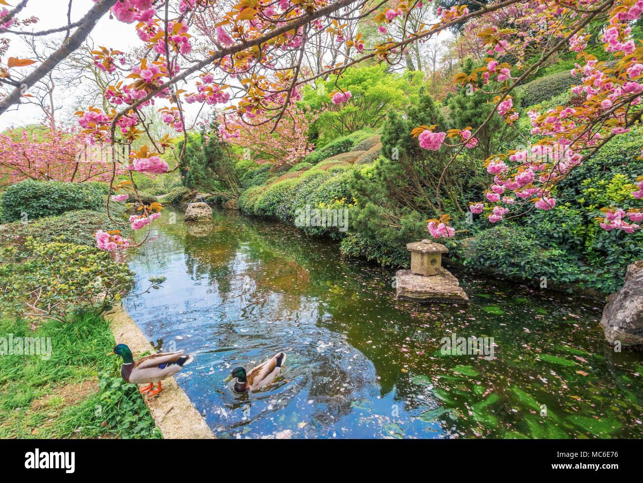 Fontane da giardino giapponesi giardino zen come realizzare un
