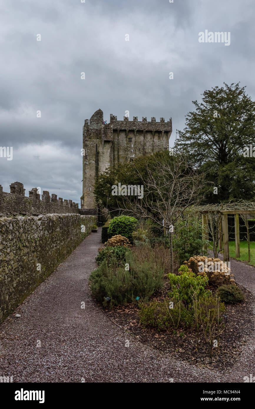 Blarney Castle in Cork Immagini Stock
