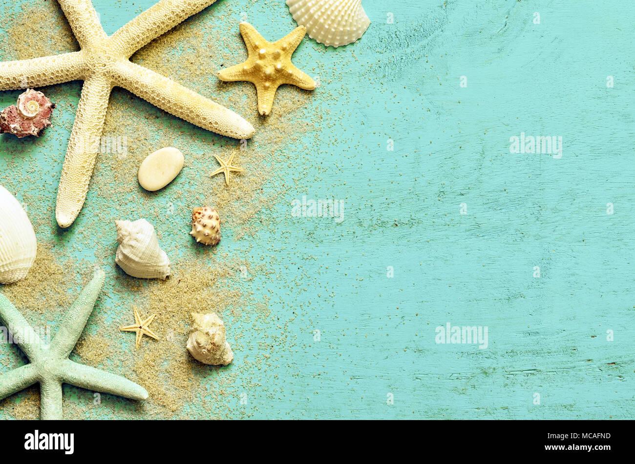 Estate Mare Sullo Sfondo Stella Di Mare Conchiglie E Sabbia Su Una