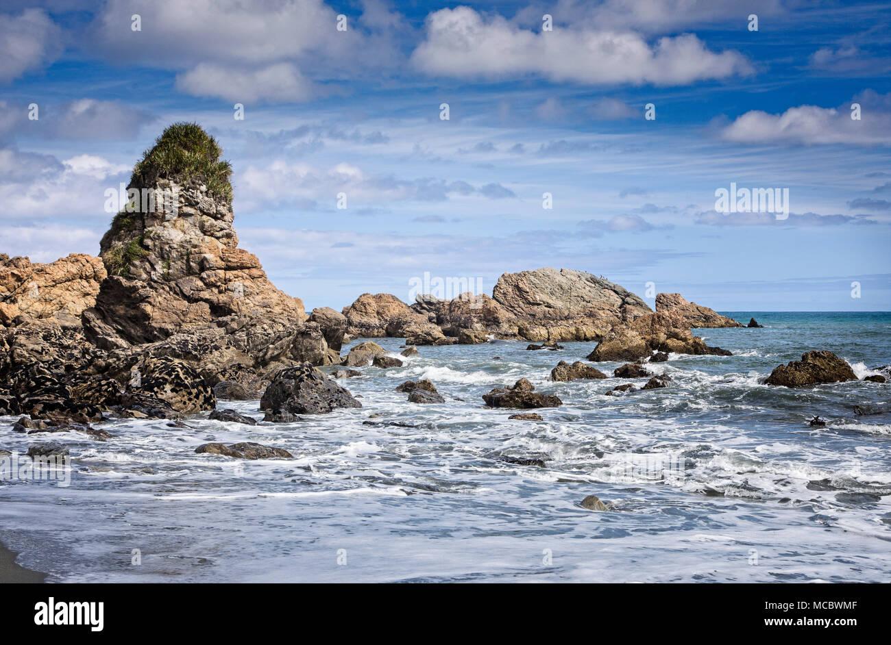 Le pile e le rocce sulla costa ovest dell'aspra regione del South Island, in Nuova Zelanda. Immagini Stock