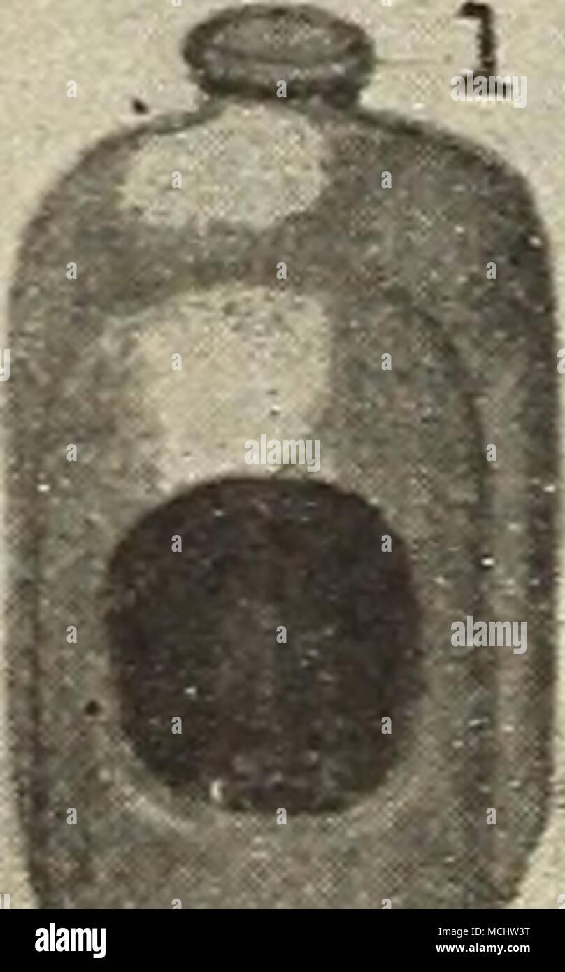 Come Uccidere Acari Della Polvere porcellanato fonte in buone condizioni a tutti i tempi. 26