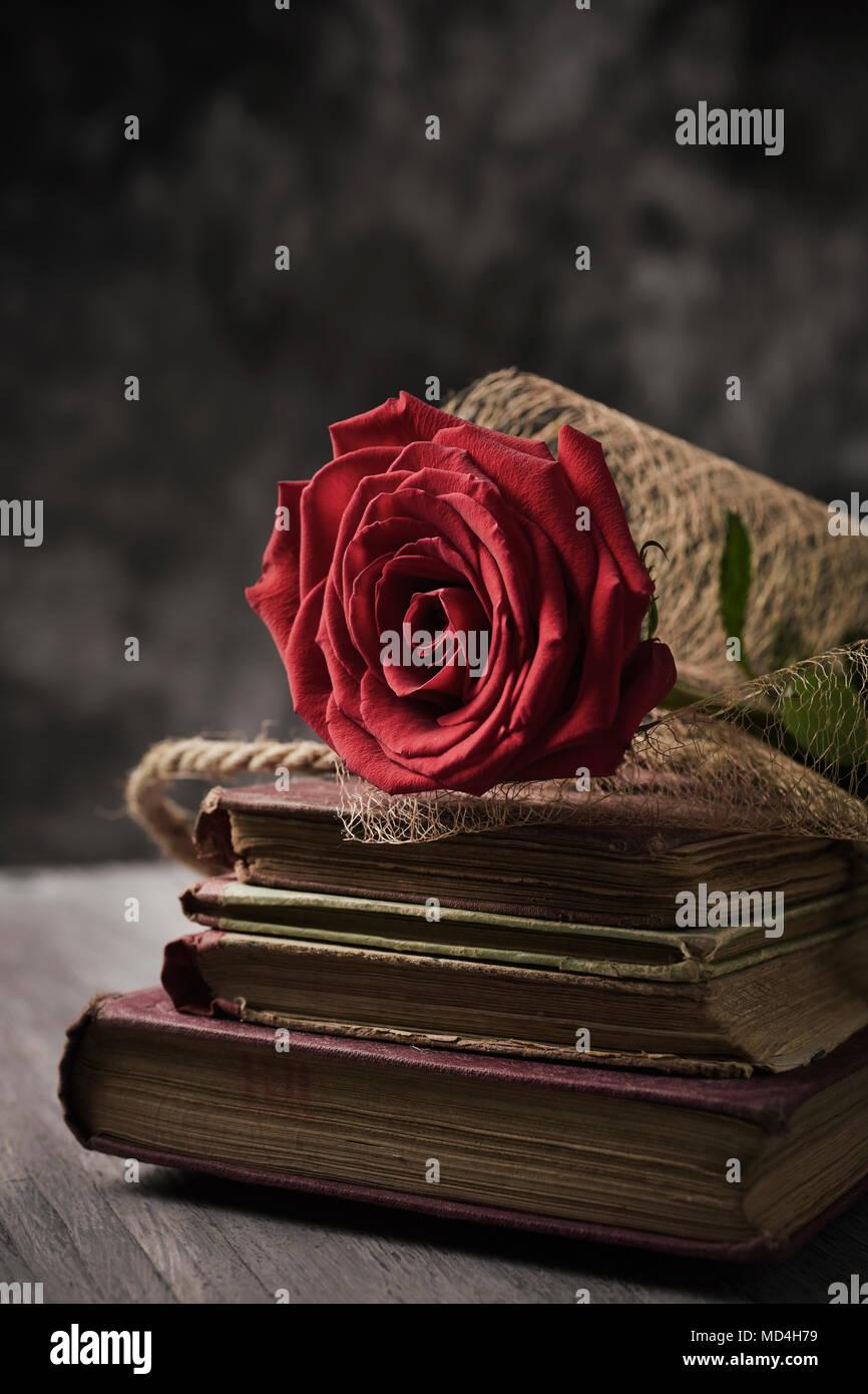 Primo Piano Di Una Rosa Rossa Su Una Pila Di Libri Per Sant Jordi
