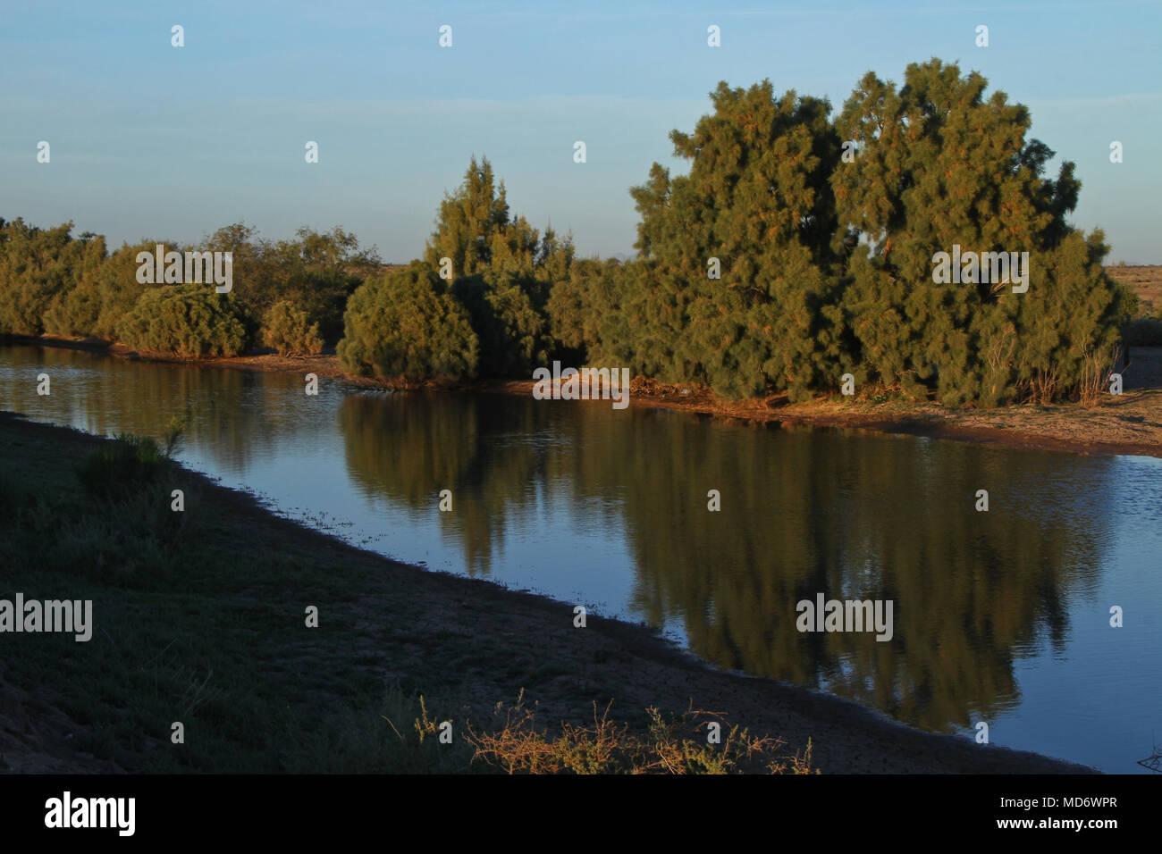 Acqua di stagno nel deserto di San Nicolas, utilizzare: la coltivazione di specie marine in azienda..*Lunedì*06*/Feb/201*.***foto:personale/NortePhoto**.*n*vendita*a*terzo* Immagini Stock