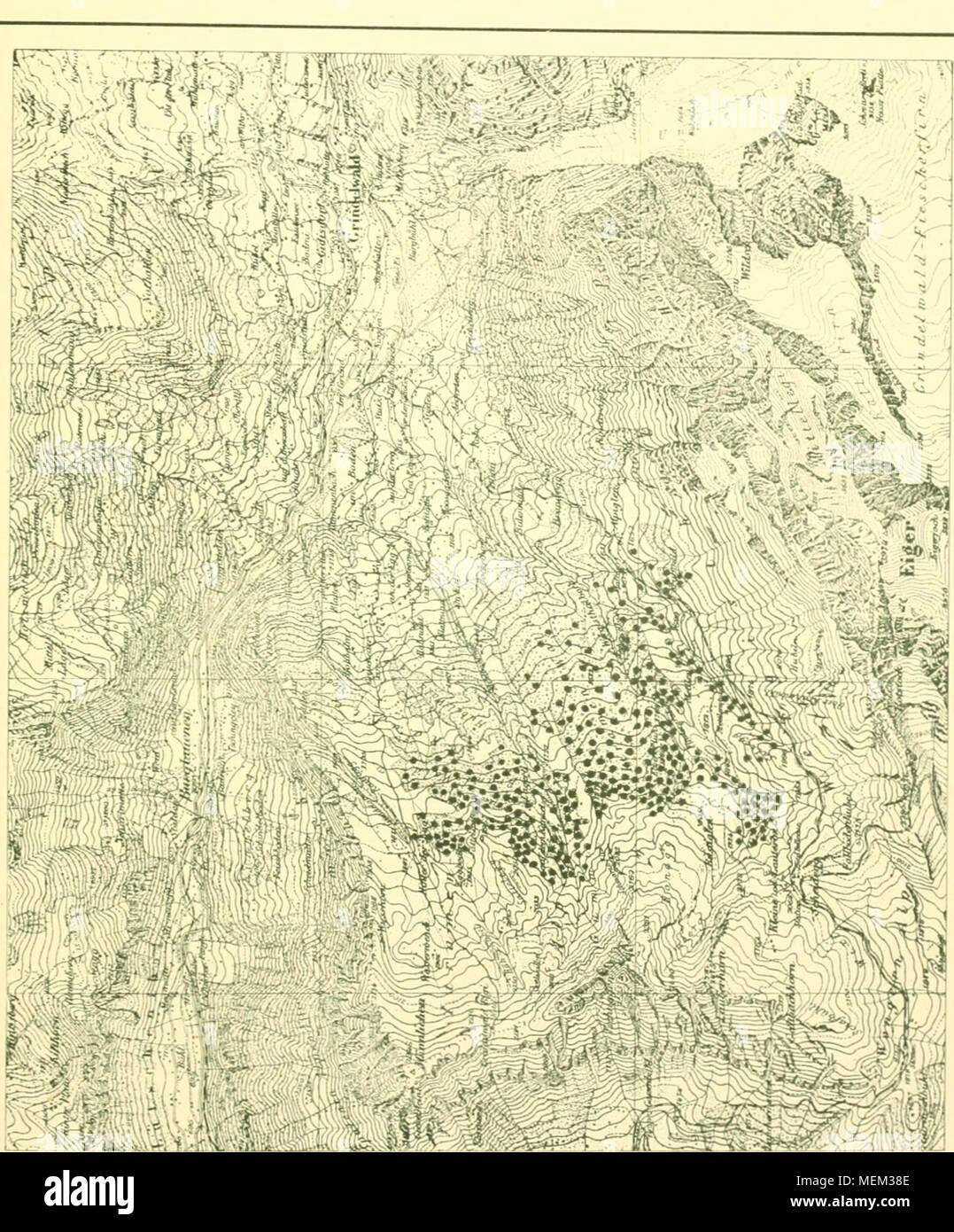 . Die Arve in der Schweiz : ein Beitrag zur Waldgeschichte Waldwirtschaft und der Schweizer Alpen . Foto Stock