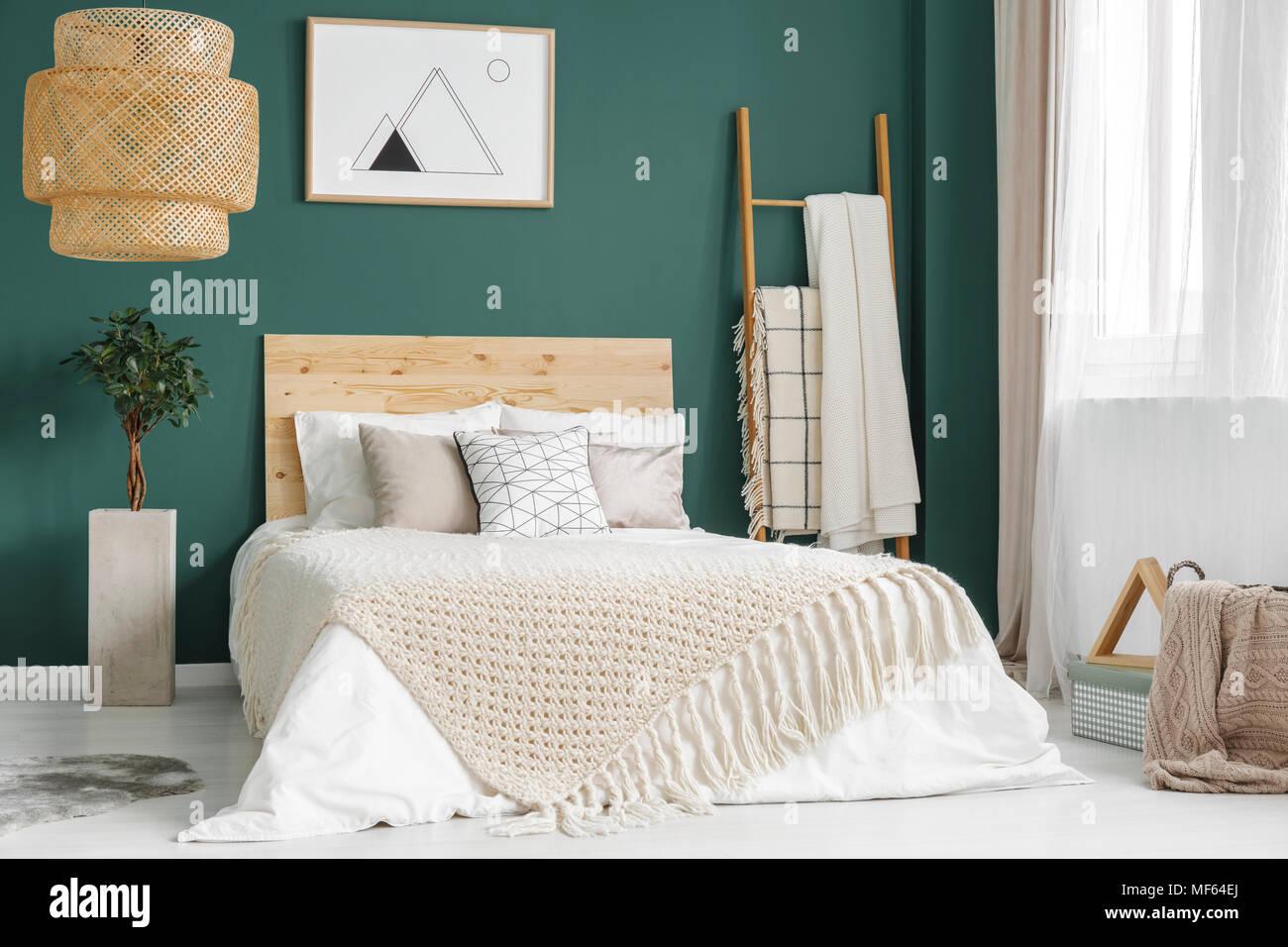 Impianti e rattan lampada in verde accogliente interiore camera da ...