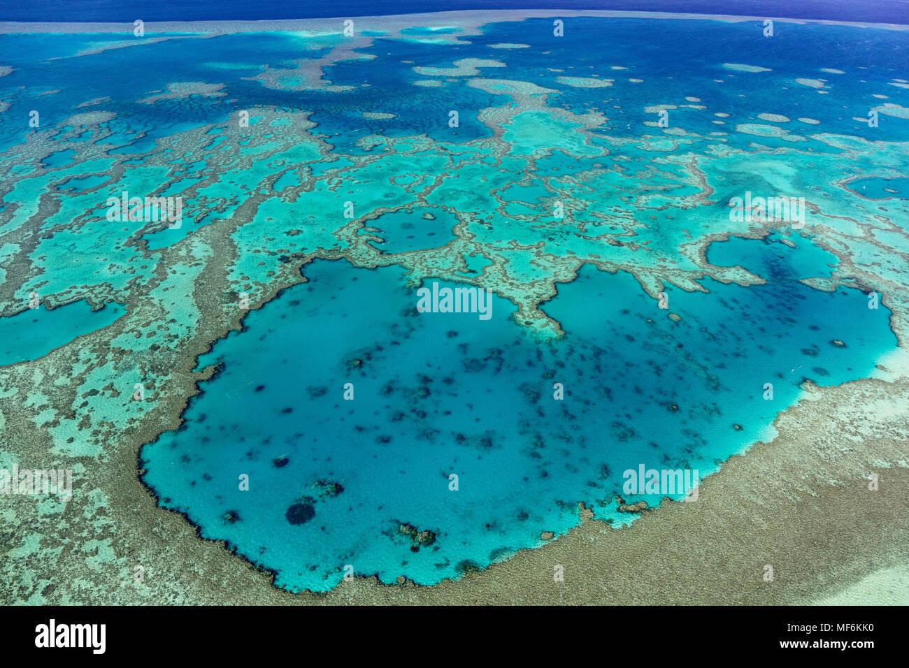 Strutture in Coral Reef, la Grande Barriera Corallina, Queensland, Australia Immagini Stock